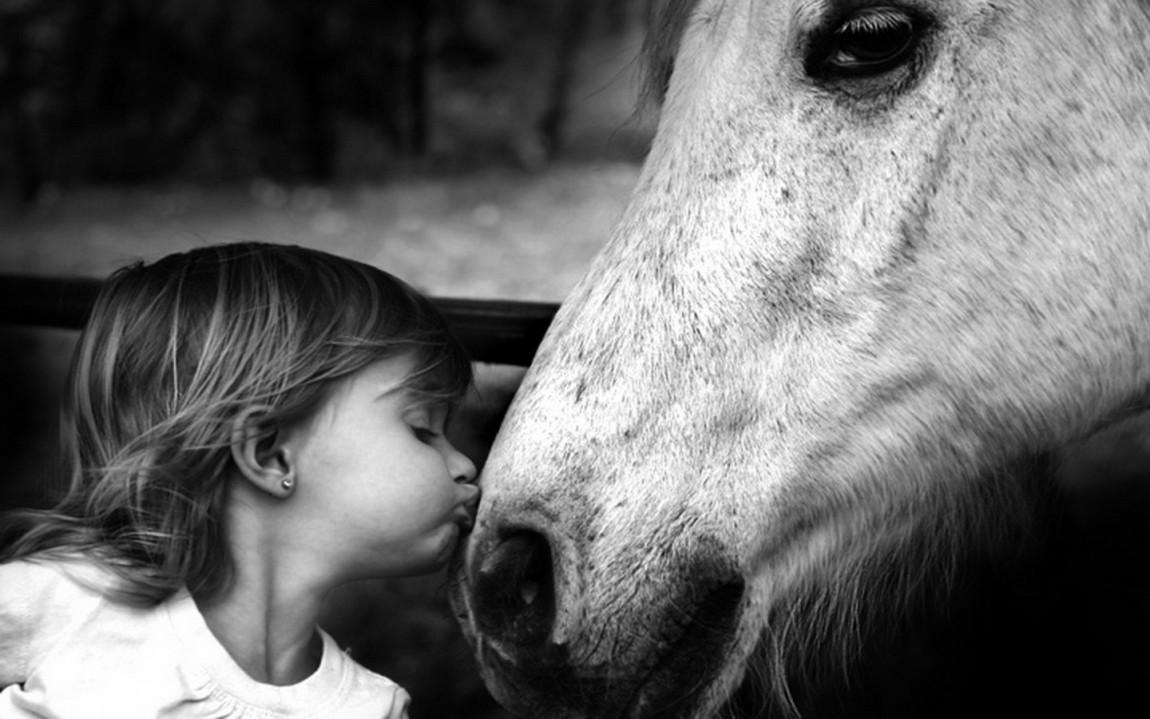 Storia di un cavallo davvero molto speciale!!!